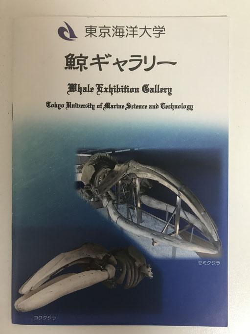 【鯨ギャラリーの小冊子】