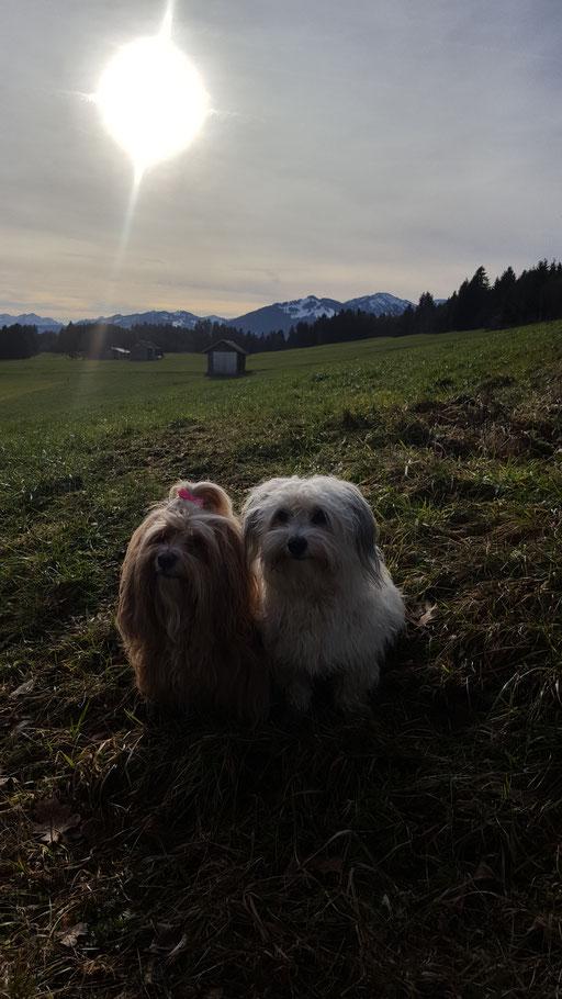 Tami und Bella beim Silvestergassi.