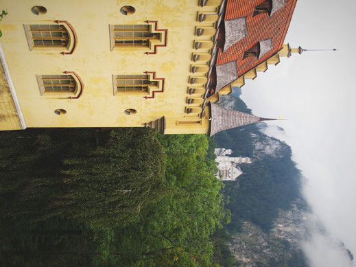 hohenschwangau chateaux bavière allemagne jaune montagne
