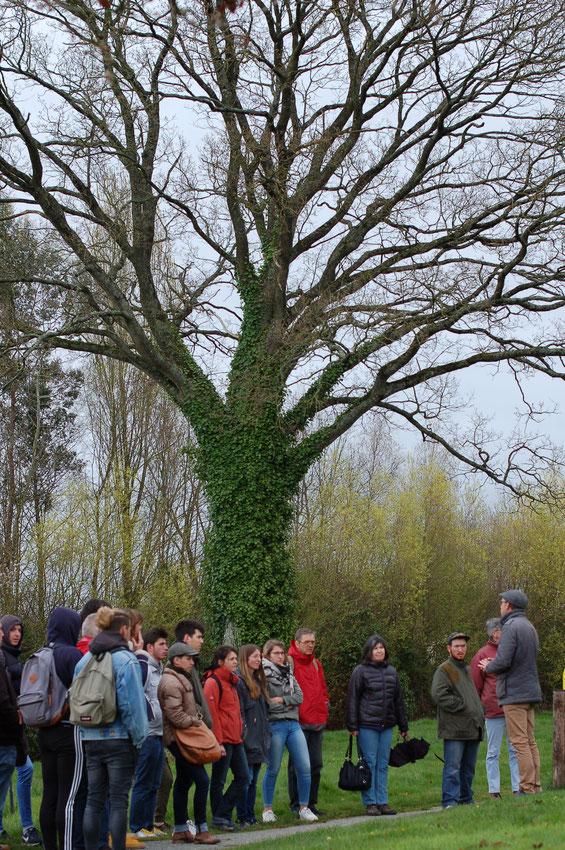 Visite des espaces verts de la commune avec Antoine Bailleul, en charge de l'animation de l'Atlas de Biodiversité Communale sur Saint-Aubin du Cormier