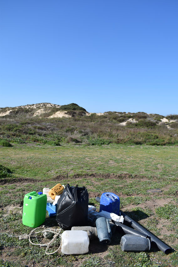 Beach clean Portugal - plastic pollution