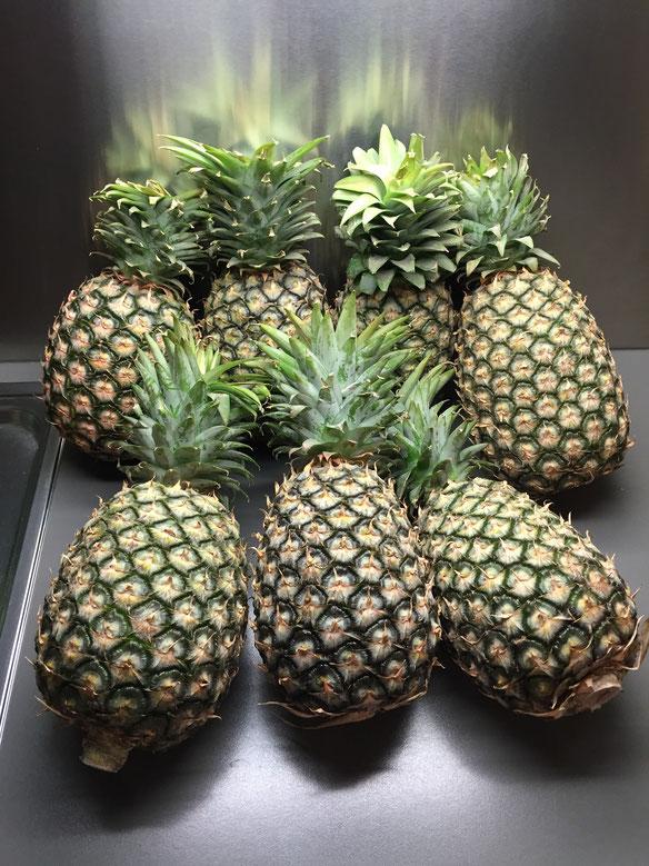 13.5kg Cayenne Ananas von ORKOS