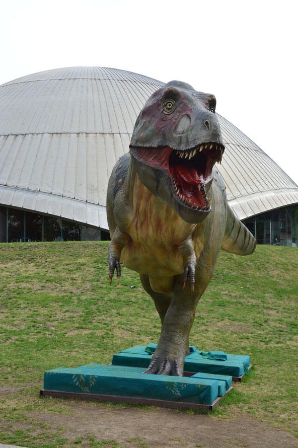 Wir kommen auf unserem Weg am Planetarium vorbei, auch dort steht ein Dino.