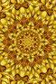 pixabay/saguari