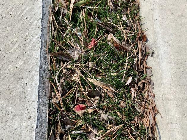 駐車場のコンクリートの隙間を人工芝で作ってあるとこうなるかも!