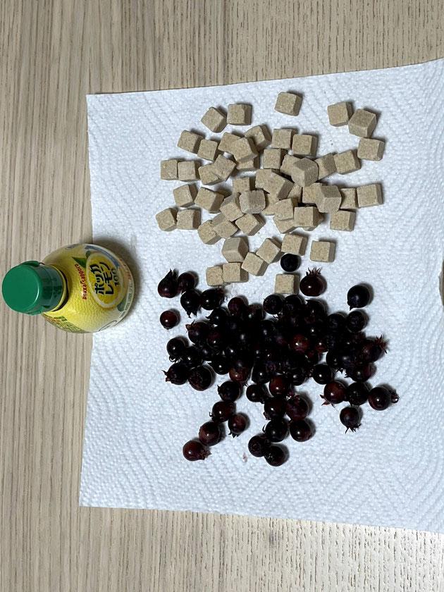 ジューンベリーと同じくらいの砂糖を投入!レモンも忘れずに。