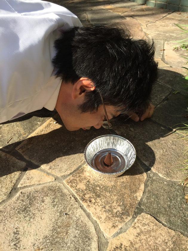 コーヒー蚊取り線香の実験際に香りを嗅ぐガーデンドクター柴ちゃん。