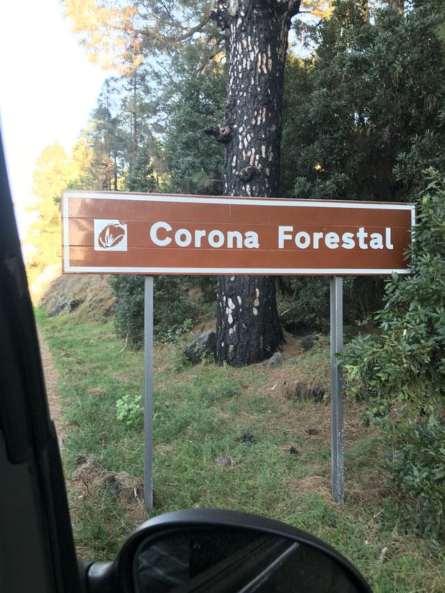 La Vega, Teneriffa und Corona,  Corona Forestal, Casa Madera,