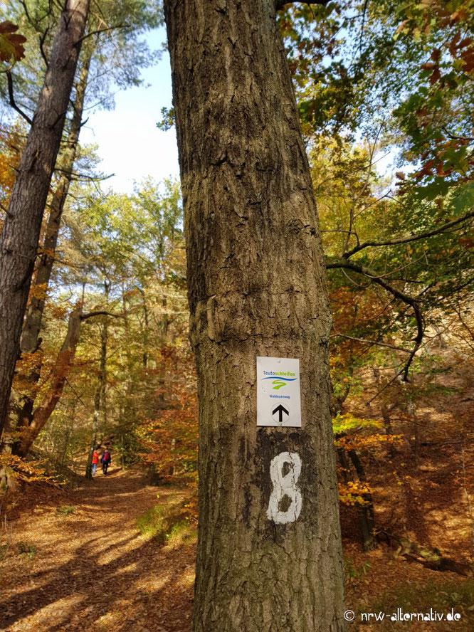 Ein Wanderschild an einem Baum im Wald. Im Hintergrund sind Wanderer zu erkennen.