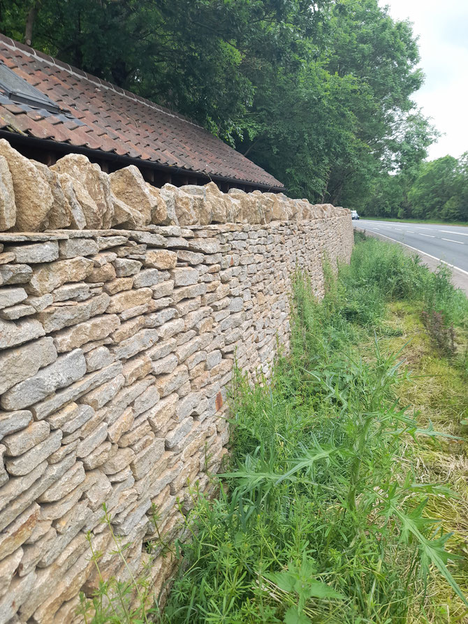 Dry stone walling for boundary wall - natural protection from the road near Frome - visibility, noise and security