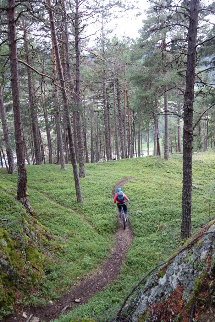 Stille Seite - Ganz alleine auf wunderschönen Naturtrails