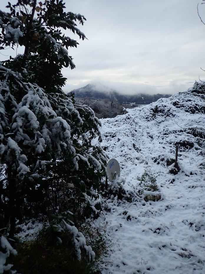 相模湖の初雪2019年