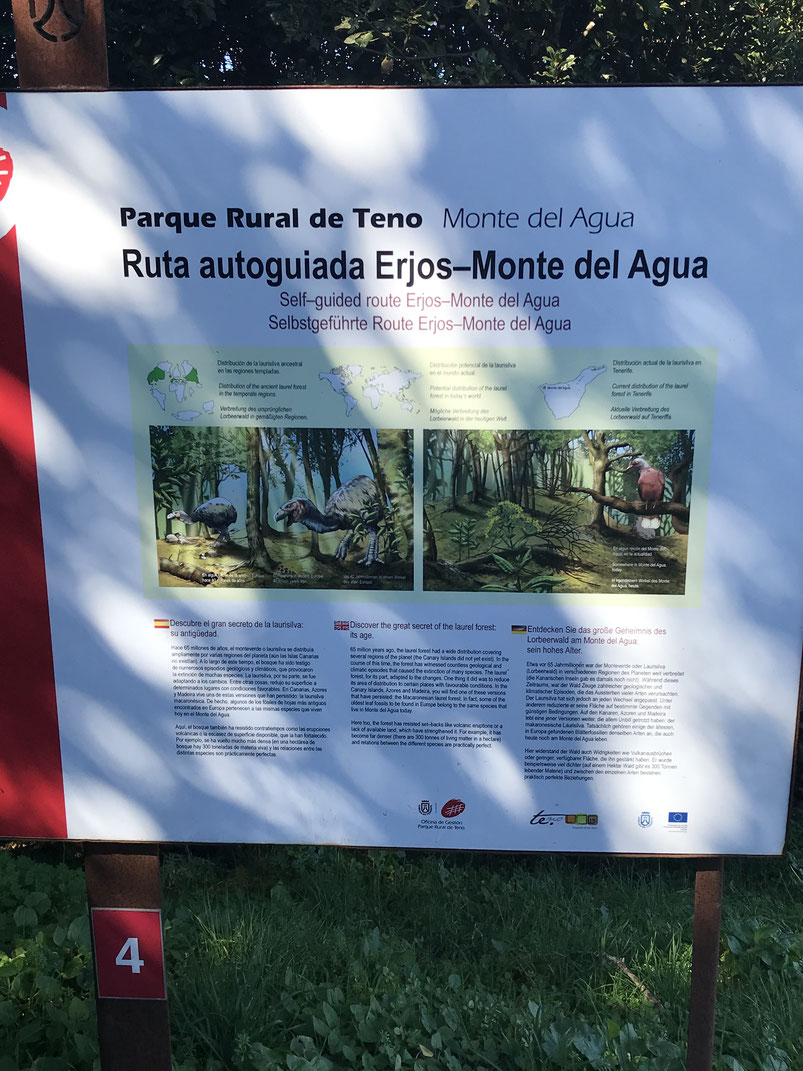 Erjos- Monte del Agua