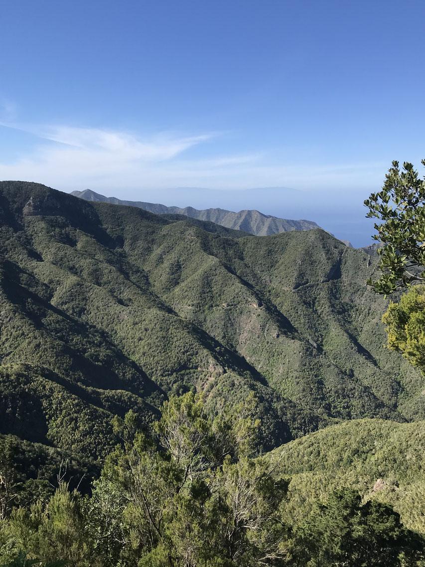 Teno Alto Tenogebirge, Casa Madera, wanderurlaub, Wandern