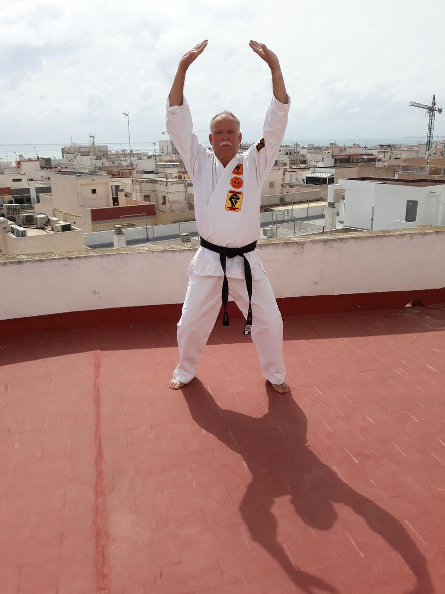 Shihan Erich B. Ries QiGong, Tai-Chi, Karate
