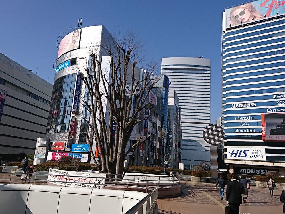 会場はこの写真奥、埼玉県の大宮ソニックシティ
