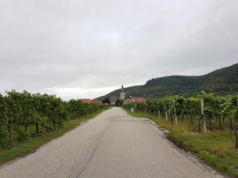 Ein Teil der Weinbergroute