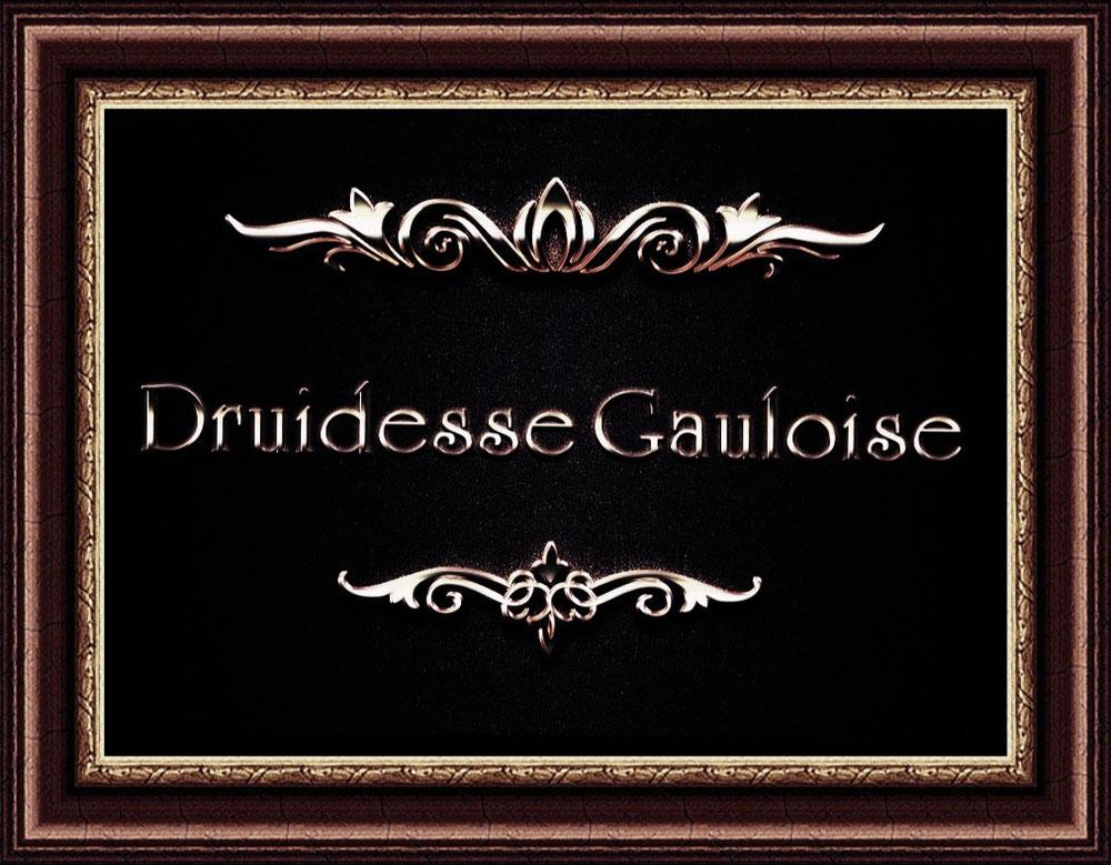 druidesse gauloise.
