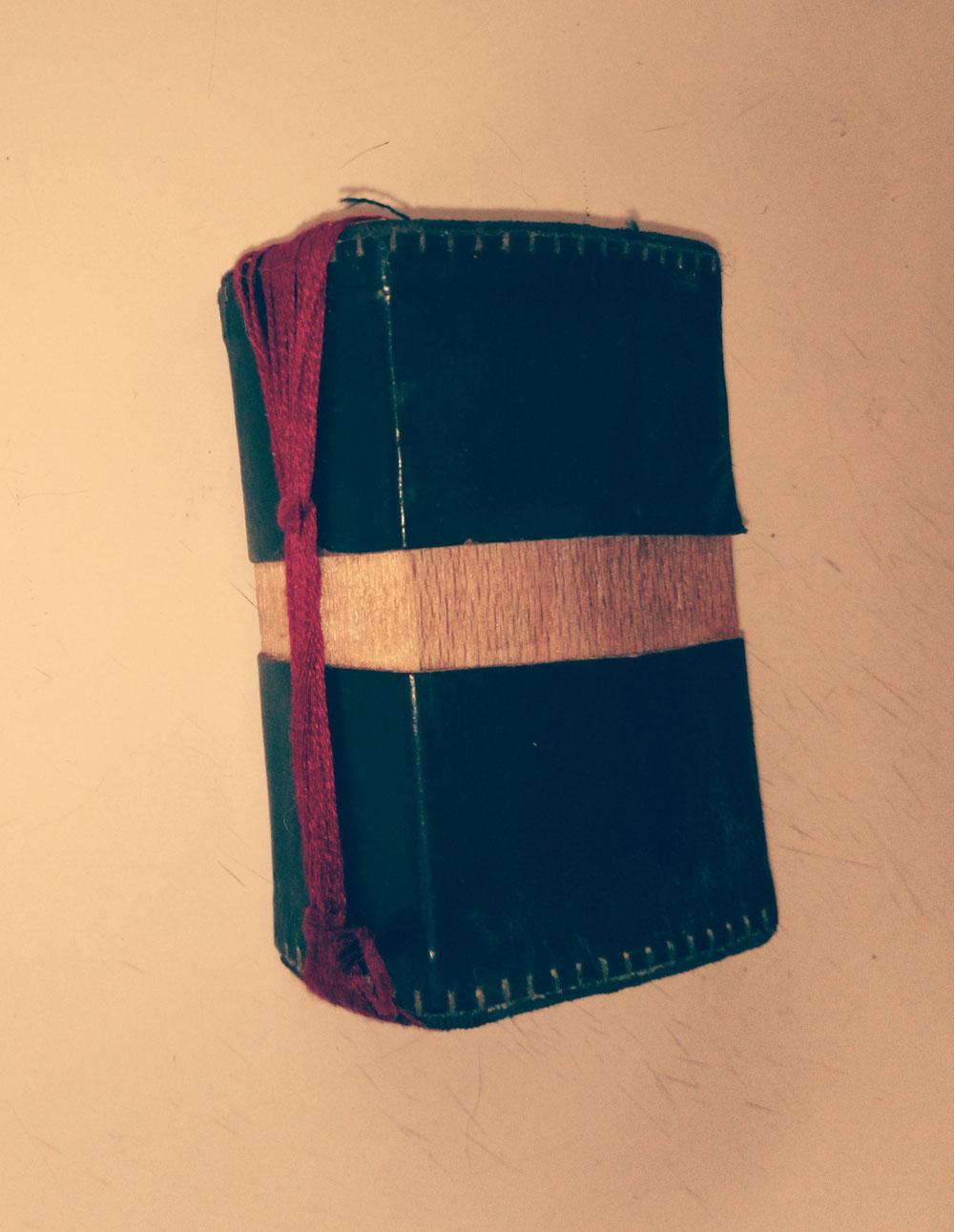Un petit livre druidique qui lui sert à noter ses secrets.