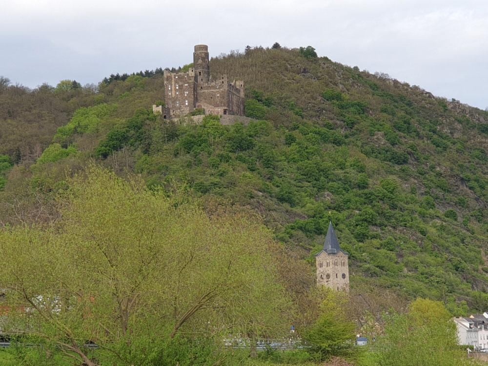 Der Mai färbt den Burgberg grün.