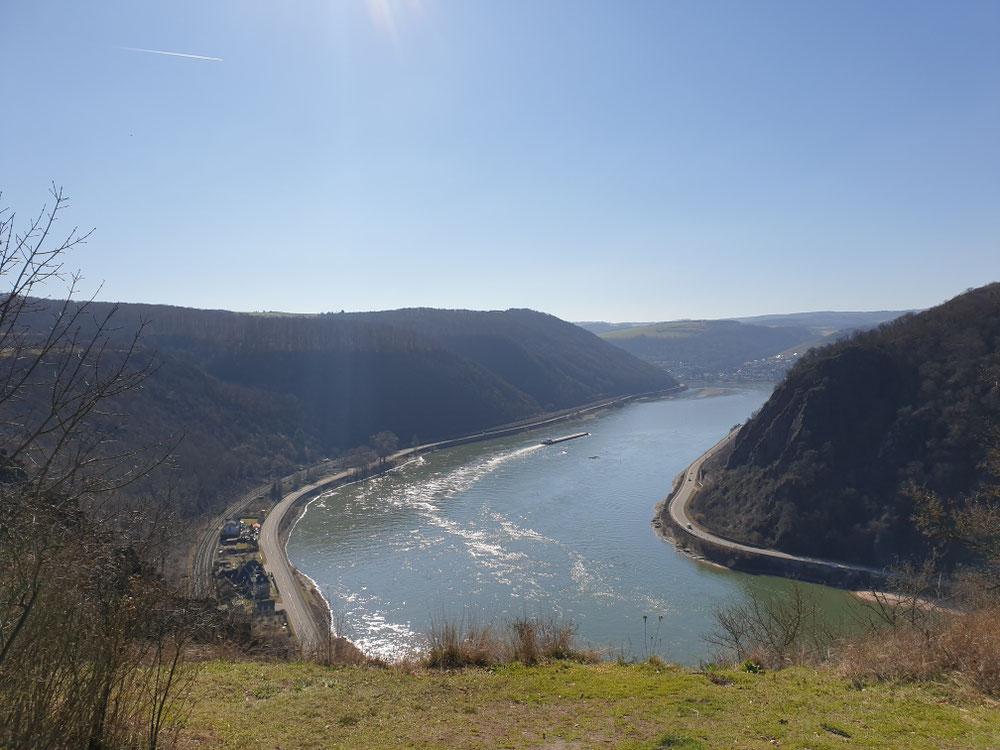 Blick vom Spitznack auf den Rhein - Oberwesel im Hintergrund (Februar)