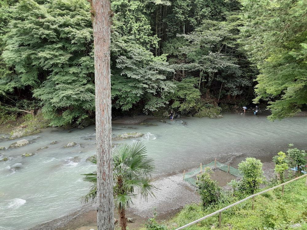 梅雨の雨で、水量はふだんの倍くらいとのことでした