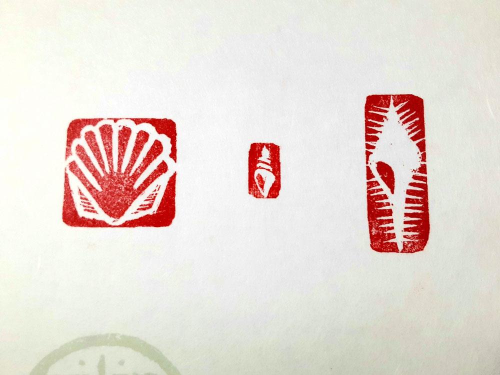 印影(貝殻3種)。骨貝、巻き貝、二枚貝です