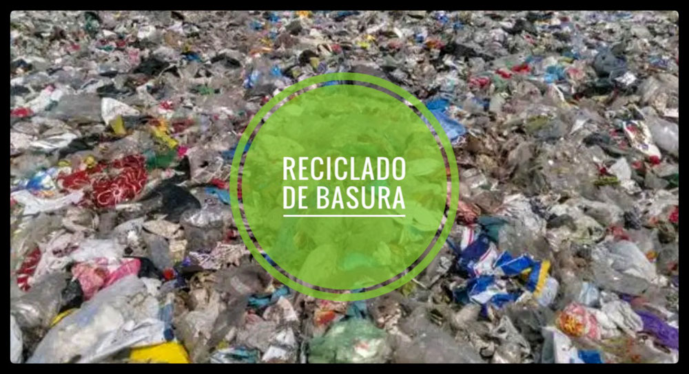Presunta comisión de Delitos contra el Medio ambiente