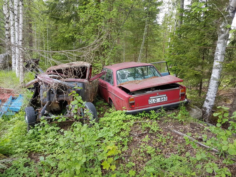 ...u bi äuä jedem viertä Huus stöh auti Volvos im Gartä😓