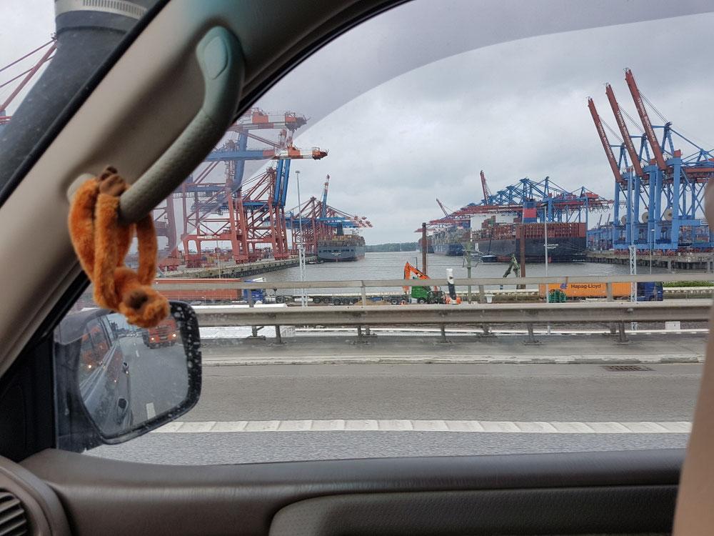 Hamburger Hafengelände...
