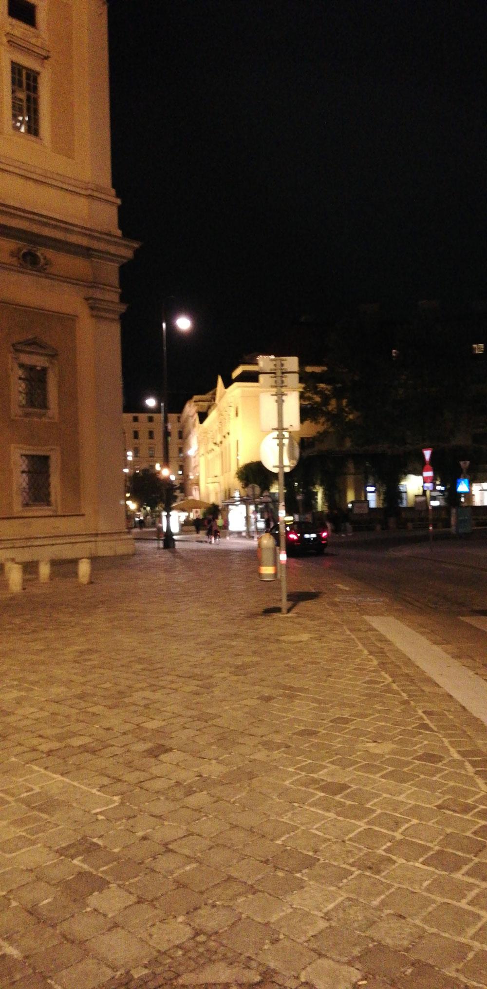 Wien ohne Wiener