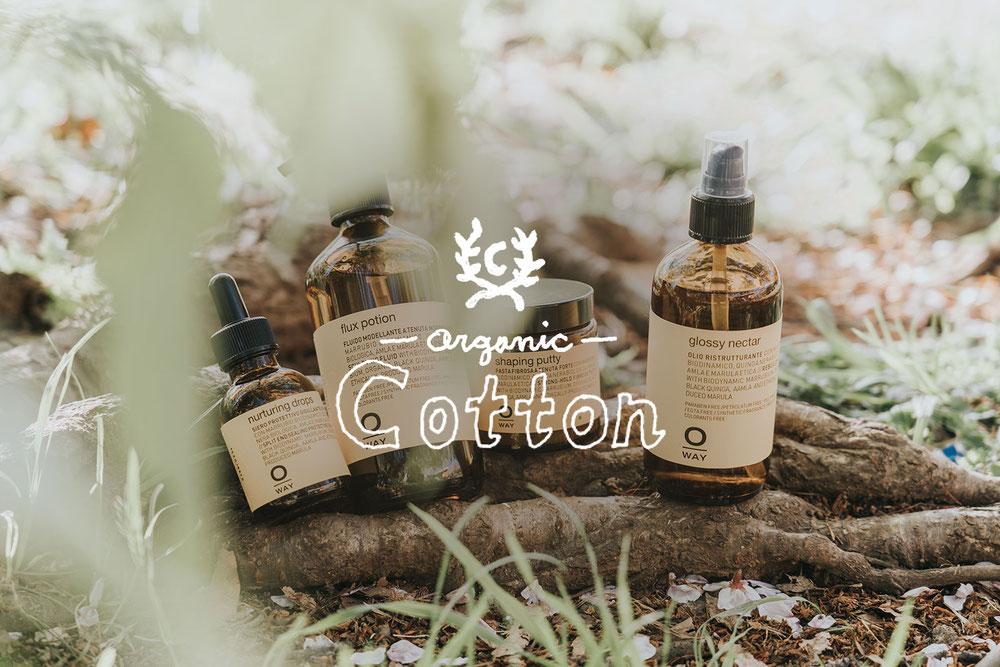 cotton 美容製品