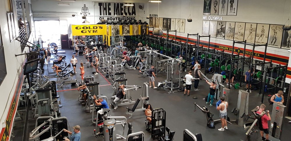 Besuch im Golds gym
