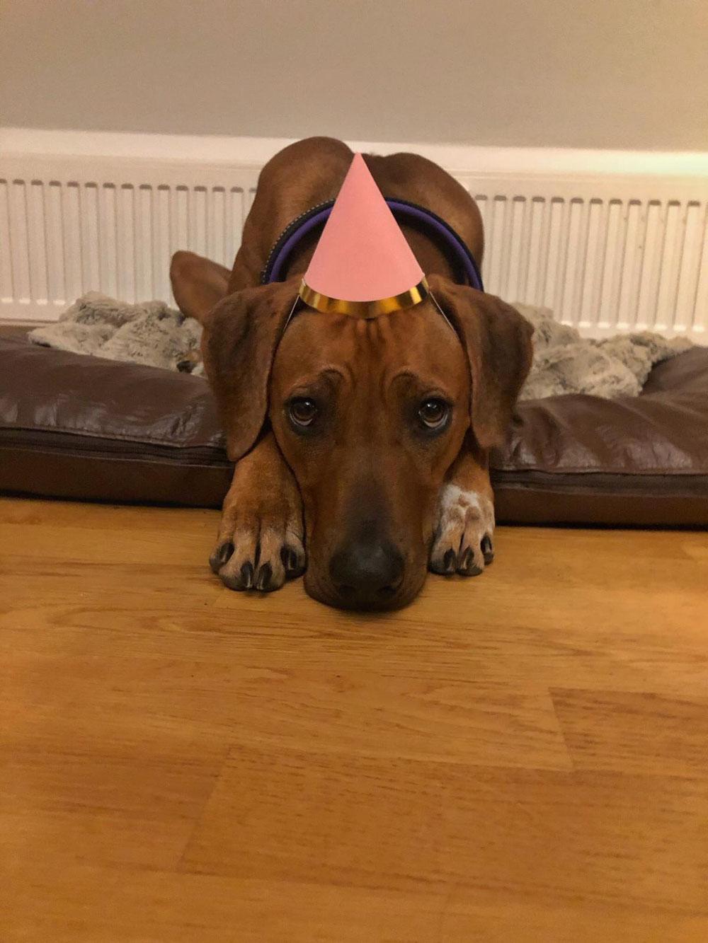 2. Geburtstag ❤️