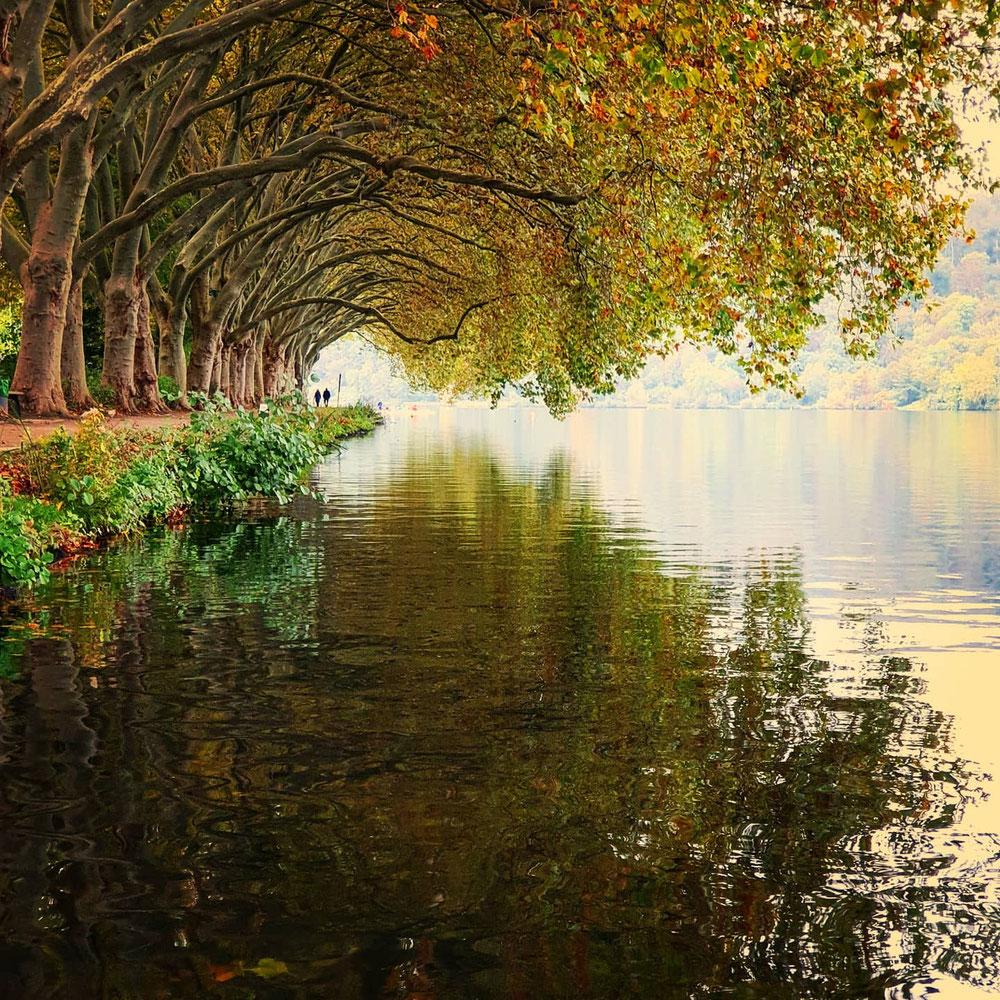 ...der Herbst 🍂🍃🍁 ist da❗