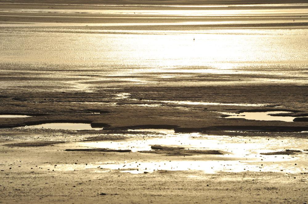 étendus de sable ocres traversées par des zones blanches et marrons