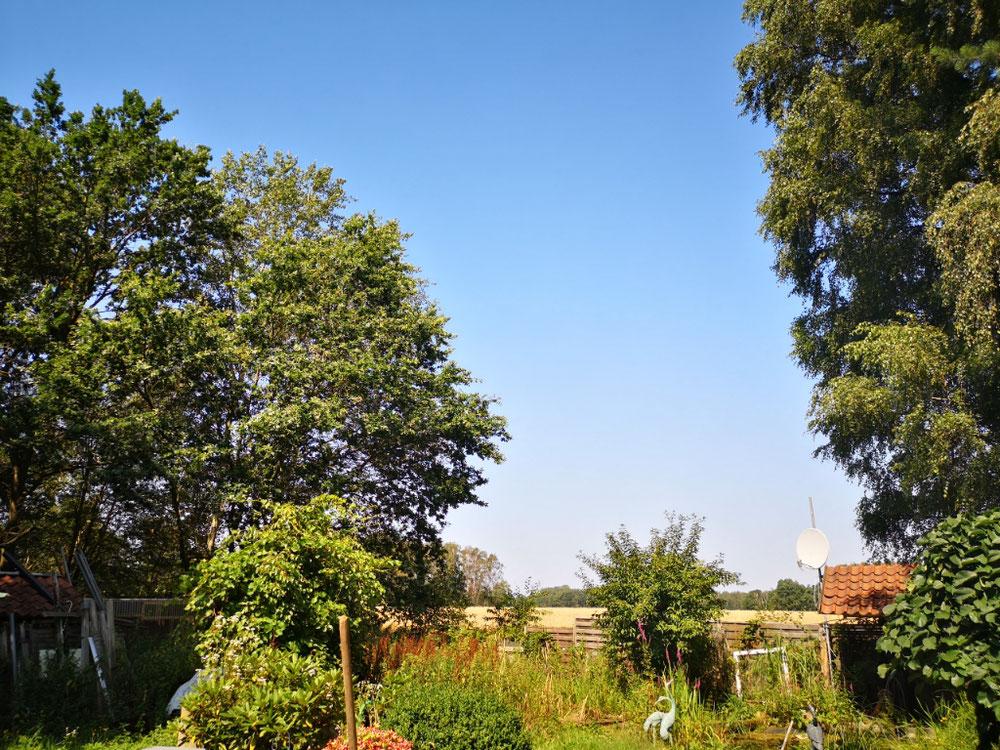 Ein unverbaubarer Blick in die Natur - kann man schöner wohnen?