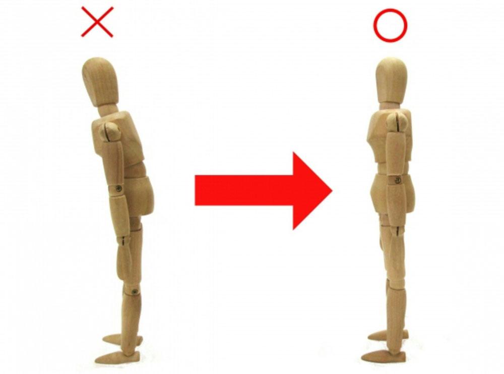 筋膜 体の繋がり 姿勢改善