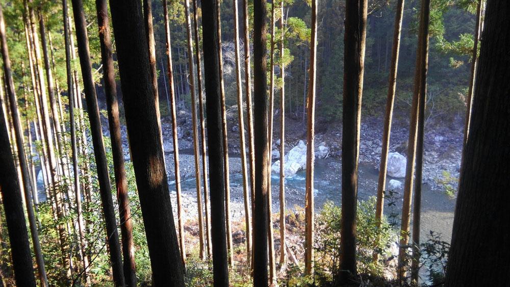 宮川の支流のひとつ、桧原谷川