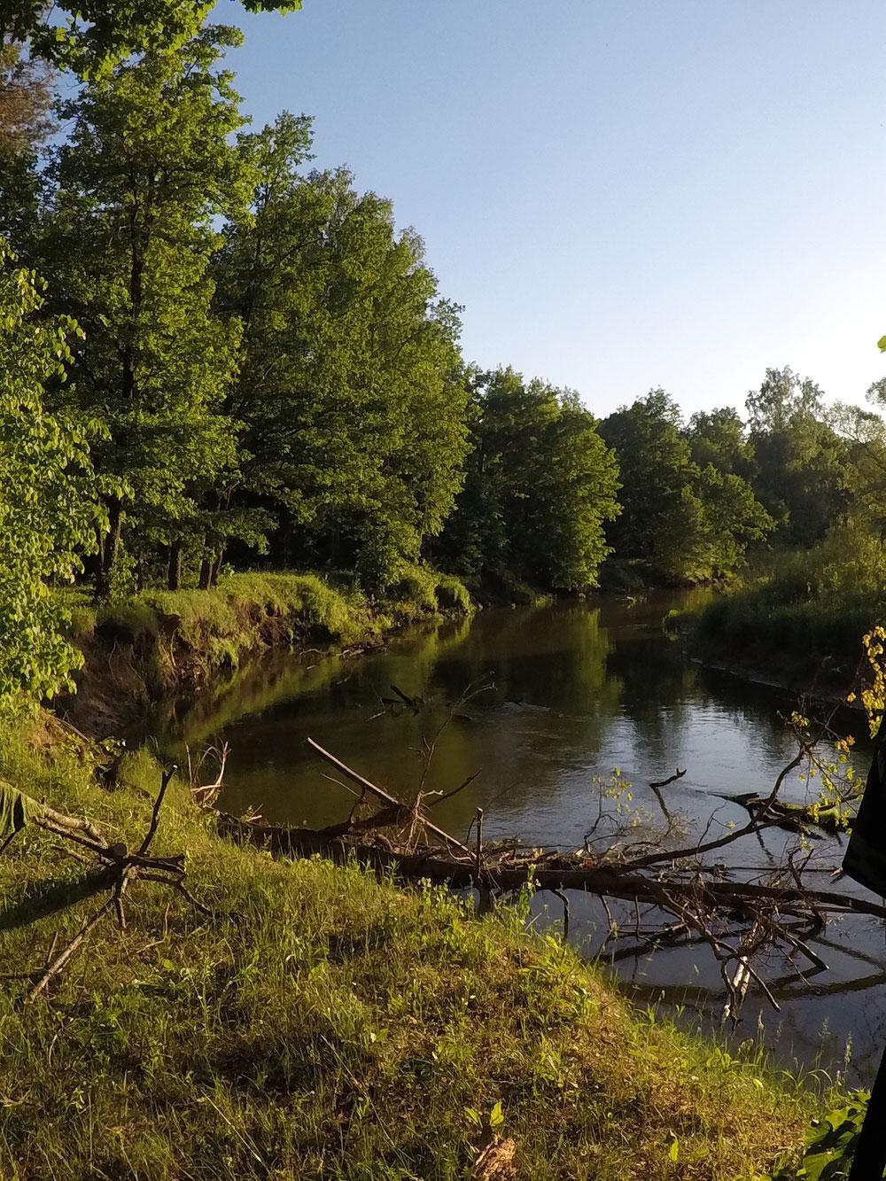 около река жиздра фото является способом