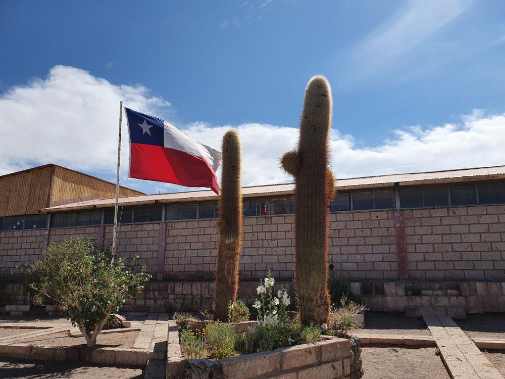 ...obwohl Kaktus mit Fahne schon auch schick