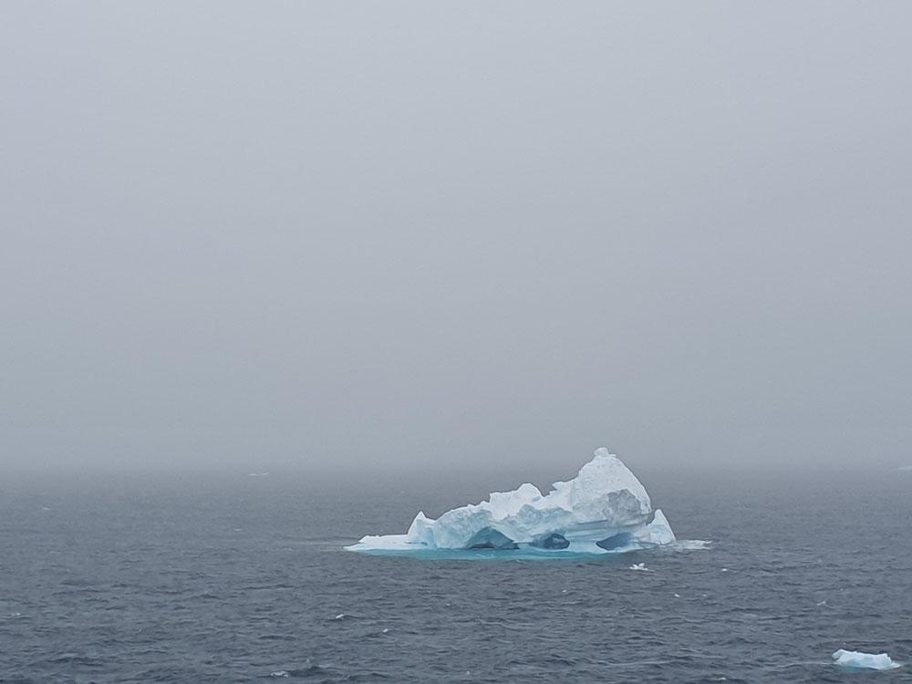 Dafür mehr Eisberge...
