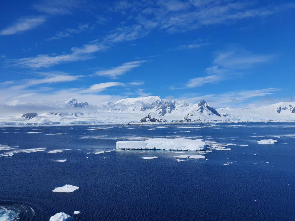 Wir anderen bewundern weiter Eisberge und warten auf Wale