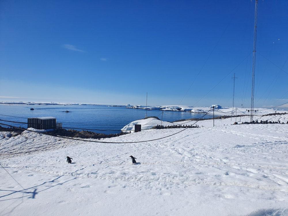 Der südlichste Punkt unserer Reise mit 65.2°