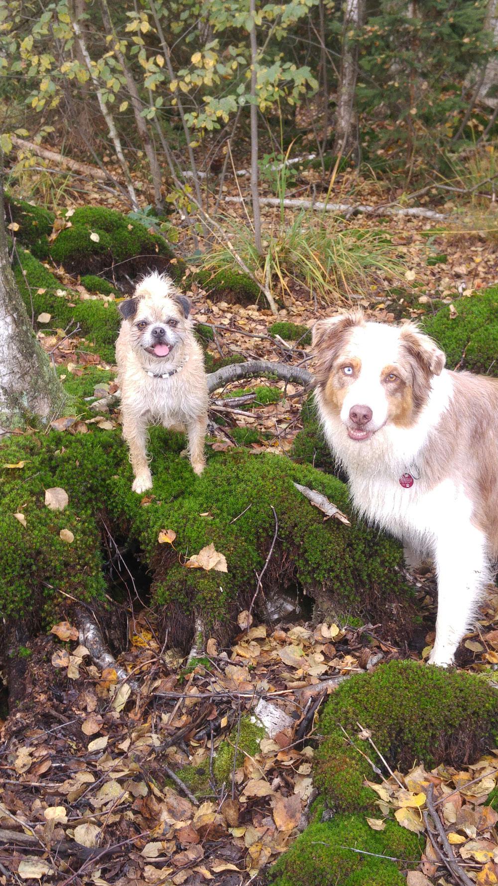 Oskar und Polly