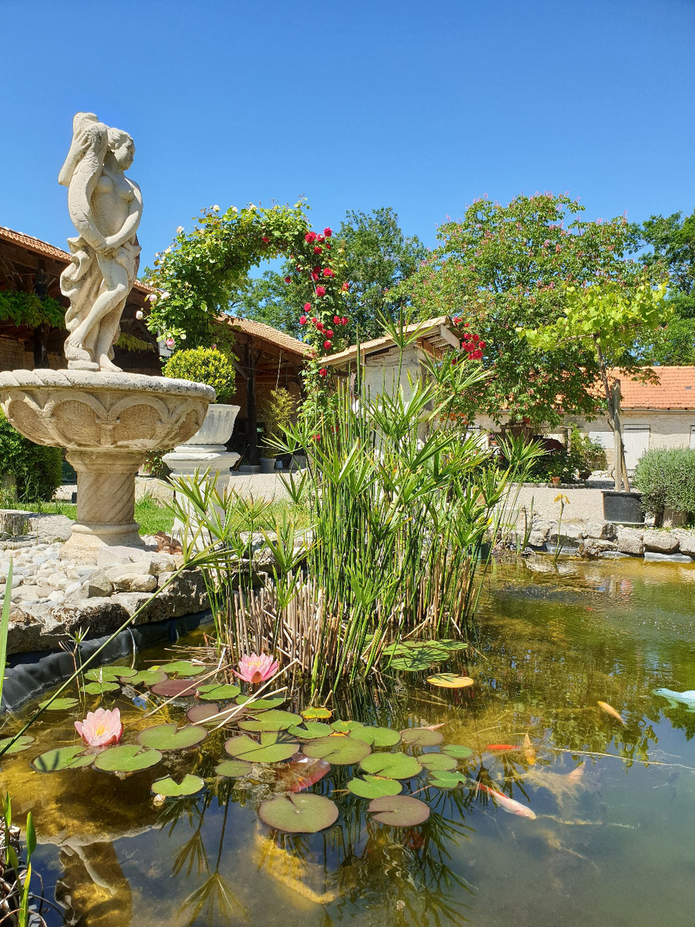 #Pond #bassin