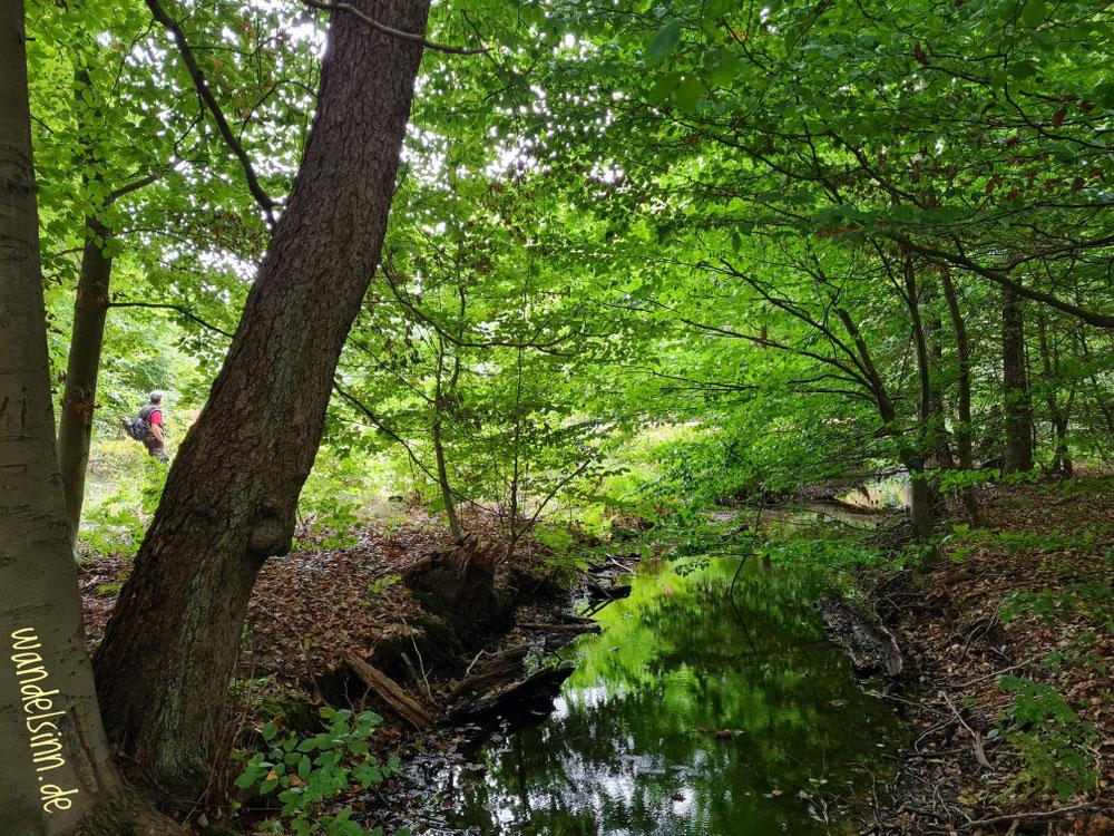 Grün und Wasser und Wege wärmen...