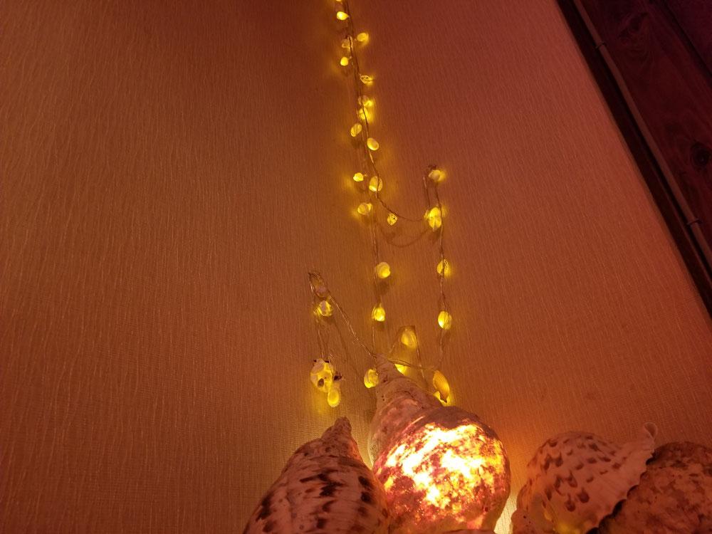 法螺貝ランプと!