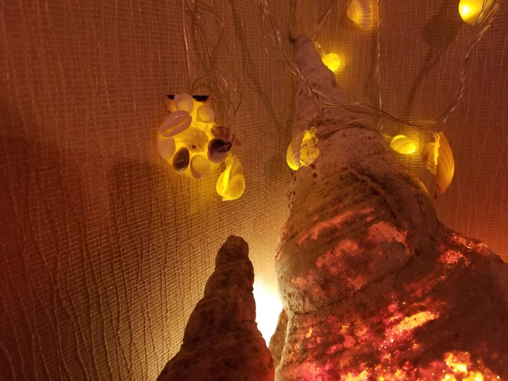 貝殻のLEDイルミネーション