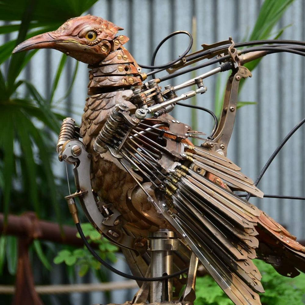 Drei Menschen braucht man, um diesen Vogel zum Tanzen zu bringen